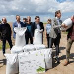 Flevolandse boeren telen verse sojaboontjes