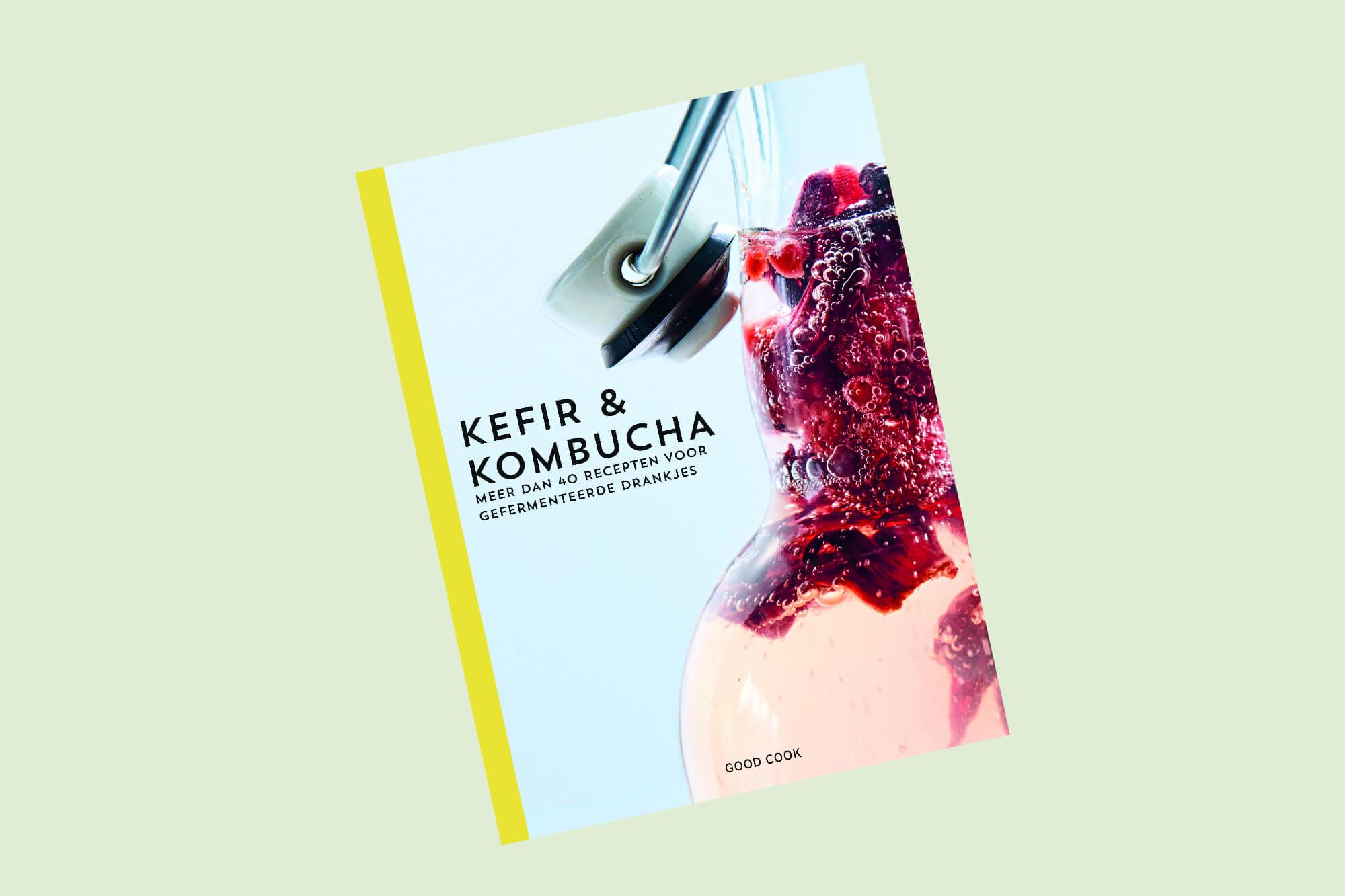 Kefir & Kombucha van Sebastian Landaeus en Nina Lausecker