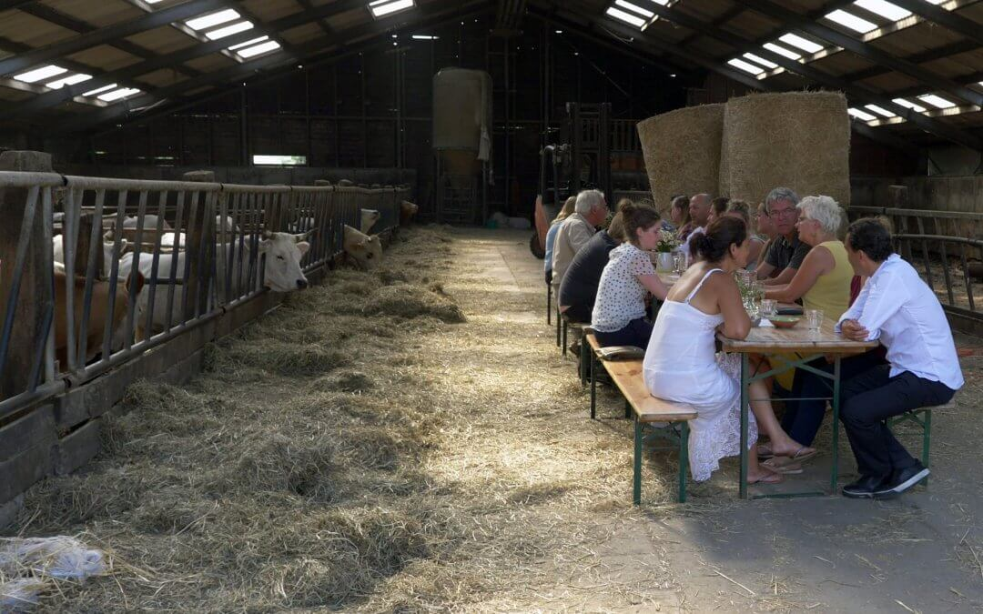 Flevolandse boeren en koks pionieren met karaktervolle polderhelden