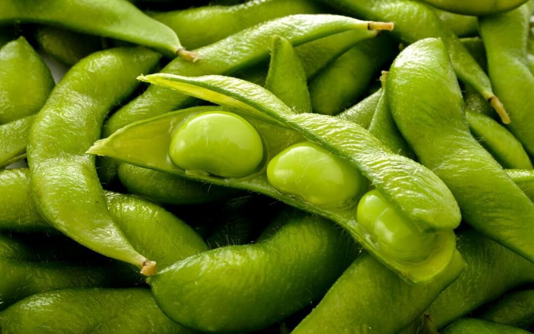 Peulvruchten: de bouwstenen voor jouw vegetarische maaltijd